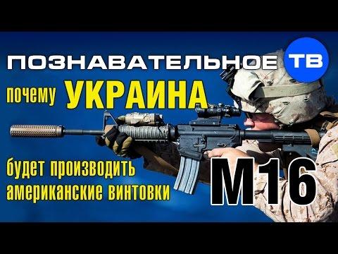 Почему Украина будет производить американские винтовки M16 Познавательное ТВ, Артм Войтенков