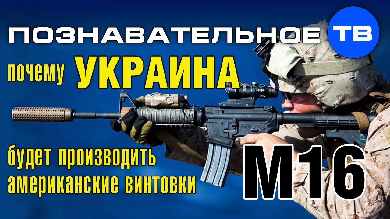 Почему Украина будет производить американские винтовки M16 .