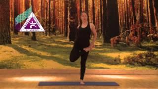 Yoga - Ardha Baddha Padmottanasana (Half Bound Lotus Standing Forward Bend)