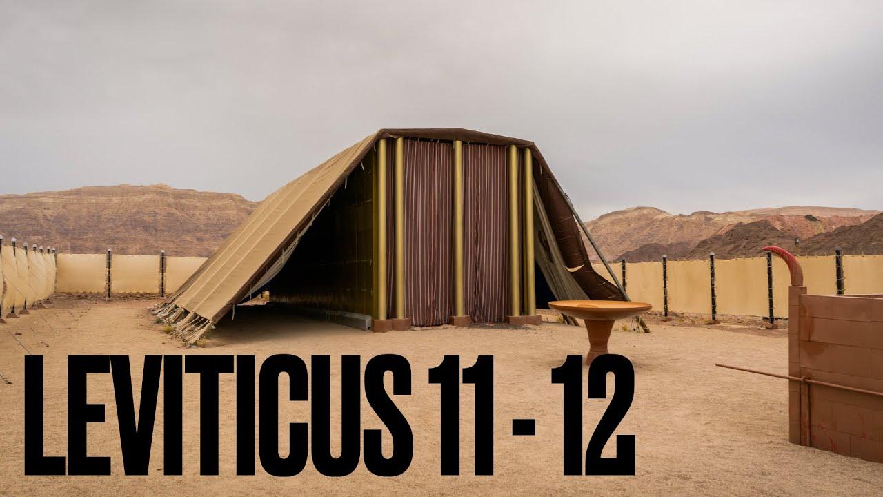 Leviticus 11-12 | Pastor Mark Abrams