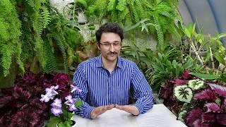 видео Водные растения и ядохимикаты.