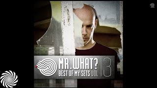 Mr.What? - Tribalingua