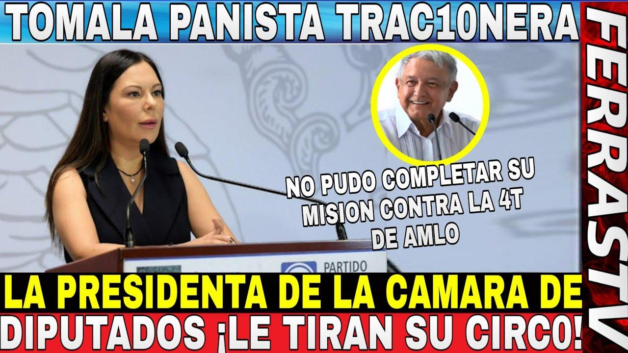 Esto Se Puso Bueno ¡¡DIPUTADOS 4T TUNDE A PANISTA TRAC10NERA!! Le Dicen Sus Verdades en Sus Cara
