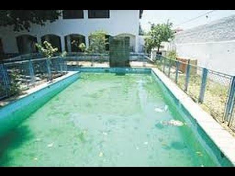 como limpar piscina com agua verde youtube