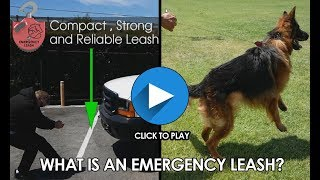 emergency leash new patended pet safety invention