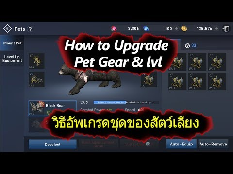 Lineage 2 Revolution How to Farm Mount Equipment & Upgrade Stone
