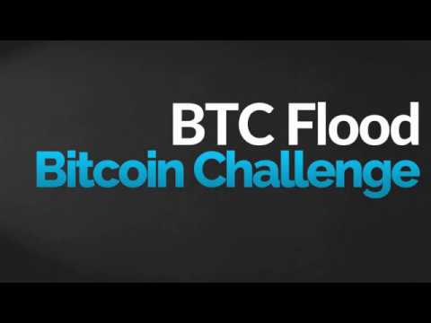BTCFlood Bitcoin Challenge (English)