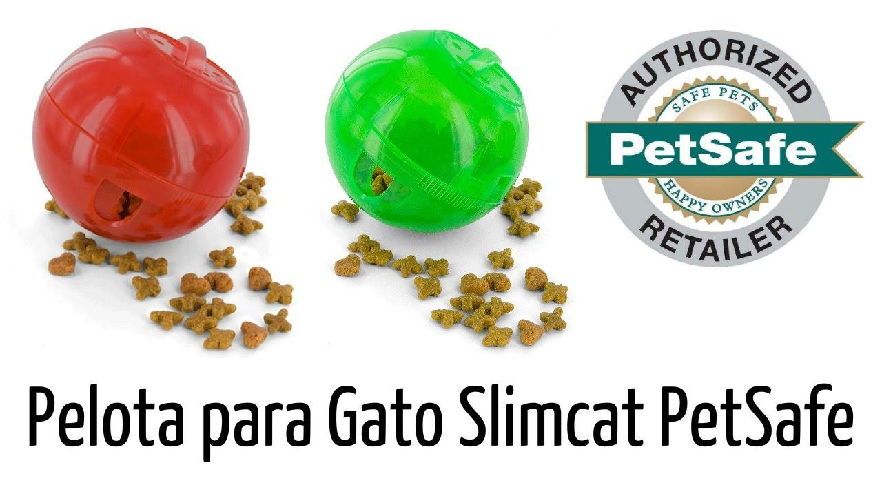 PetSafe slimcat alimentaci/ón Bola