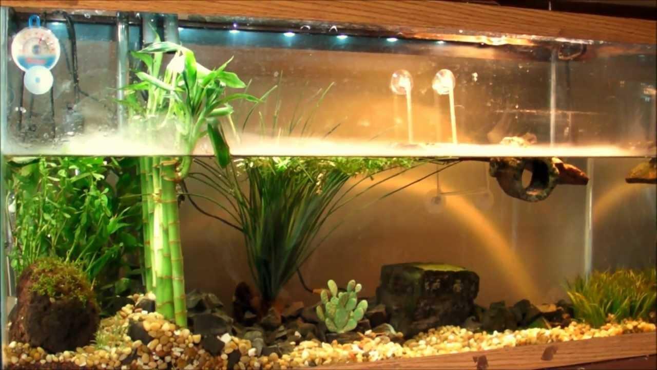 Led Aquarium Lighting Planted Tank