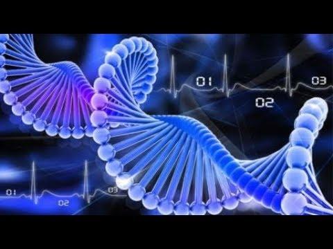 Генетики утверждают ДНК