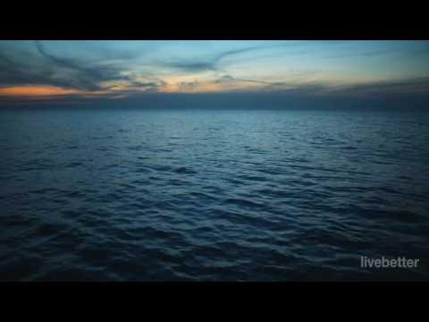 Wellness Musik Entspannung | Positives Denken Hintergrundmusik, Meditationsmusik, Entspannungsmusik