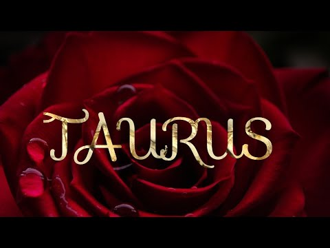 TAURUS THEY WANT TO PROVE THEY ARE THE ONE - PSYCHIC LOVE TAROT READING JANUARY
