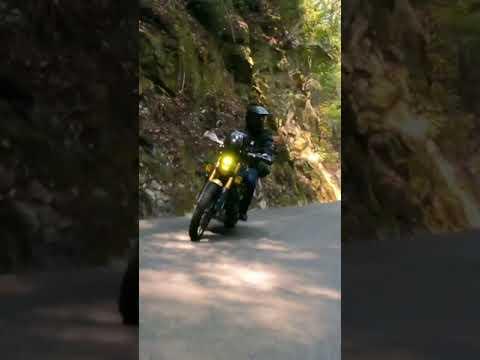 One moto twistie