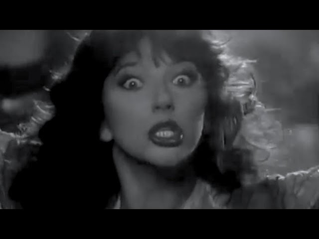 Kate Bush - Night Animals