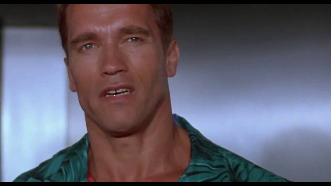 Arnold Schwarzenegger Quotes Compilation (Funny!) - YouTube