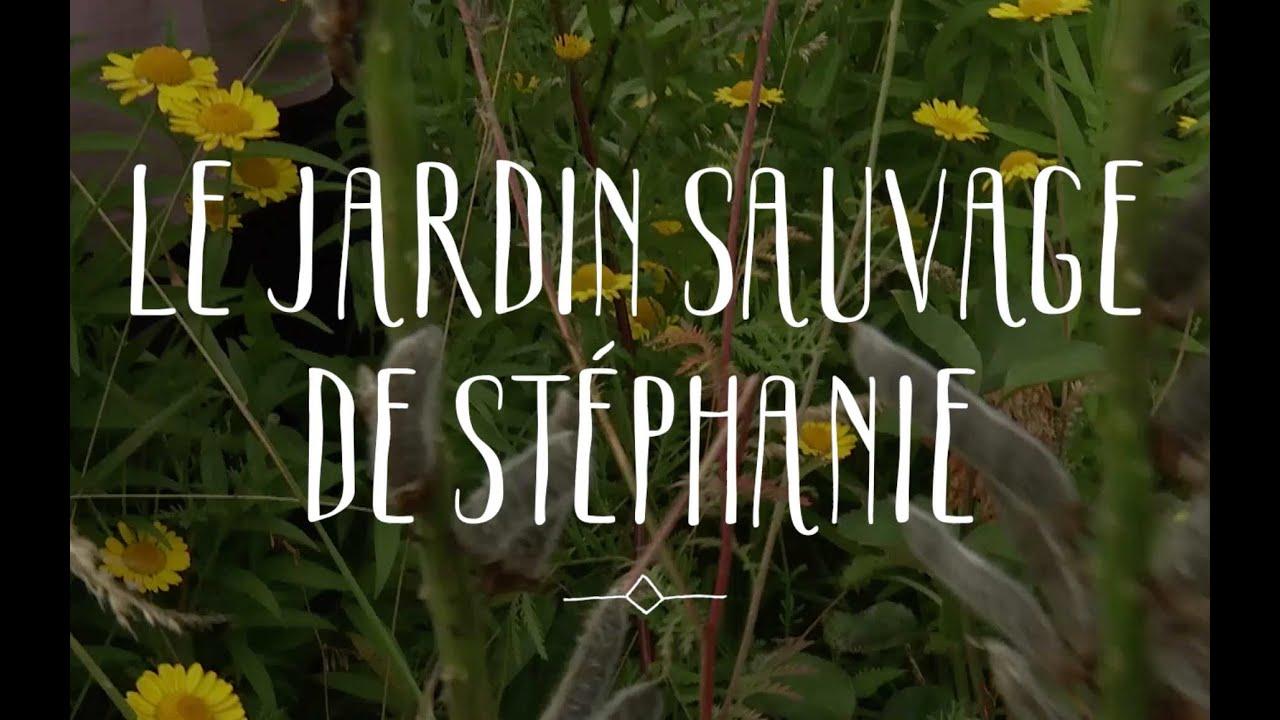 Le jardin sauvage de Stéphanie