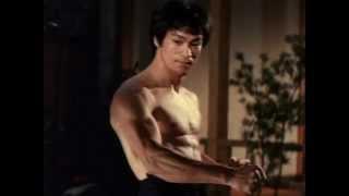 Video A Maldição do Dragão (1993) Dublado - Bruce Lee Brasil download MP3, 3GP, MP4, WEBM, AVI, FLV Februari 2018