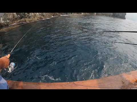 Fishing On The Triton @Catalina Island