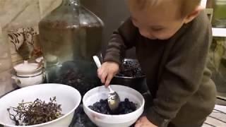 як зробити виноградне вино домашнє