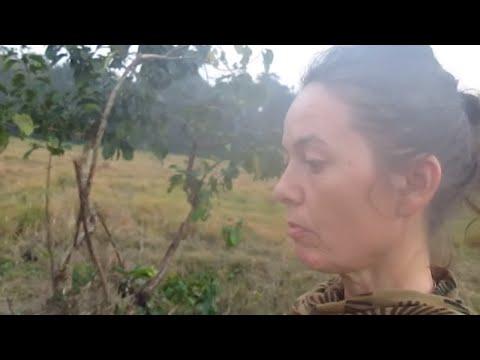 Marīci speaks about Ram Bomjon's witch-hunting