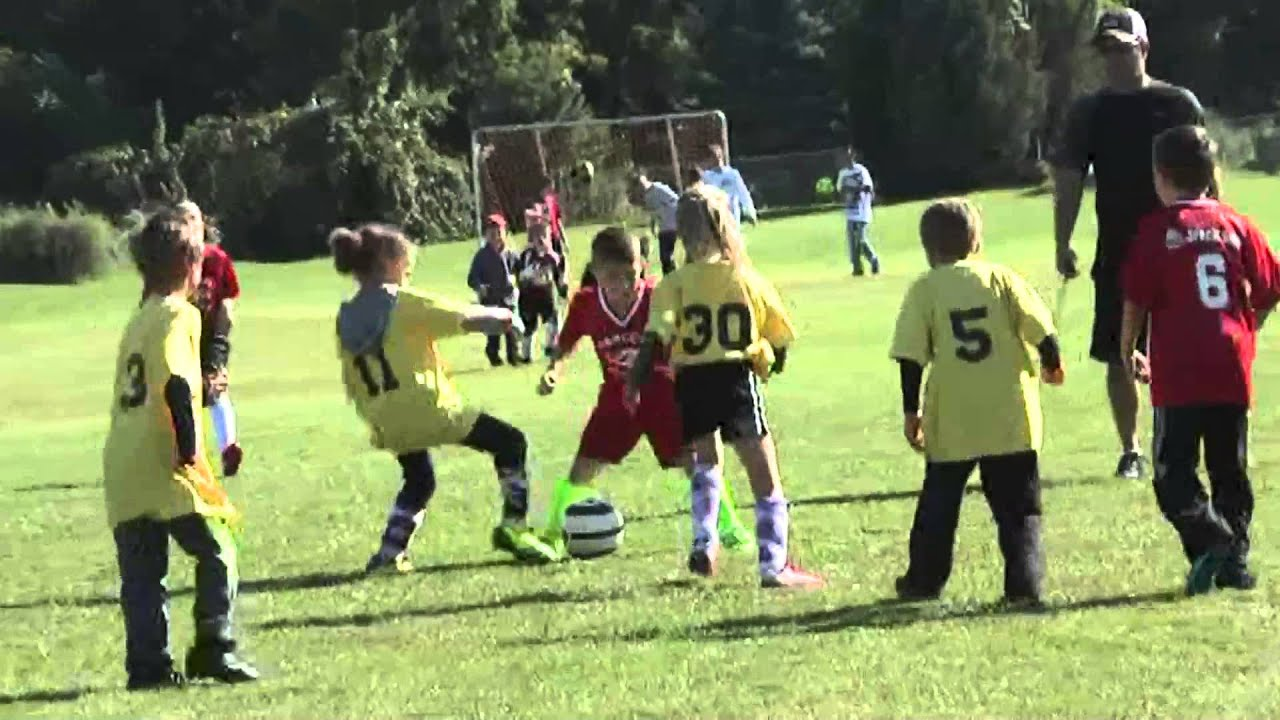 Champlain-Rouses Point - Chazy Mites  9-26-15