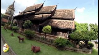 Vlog, shopping and what to expect in Chiang Mai. Buddhahood, scary martial law