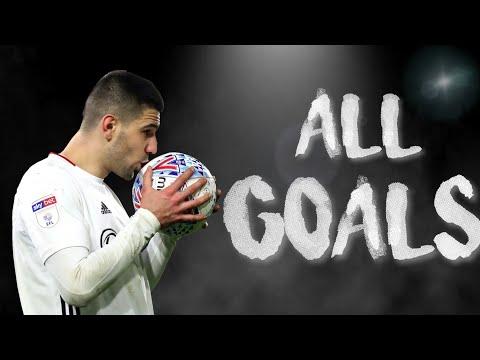 Aleksandar Mitrovic All 23 Goals For Fulham 2019/2020