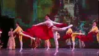 Ballet Nacional de Cuba - Don Quixote (tv ad)