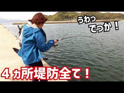 日中に堤防4ヵ所全てから釣り上げる女性達・・・