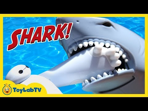 Batman, Spiderman & Baymax Toys Attacked by Shark & Hiro & Elsa are Stranded on Dino Island ToyLabTV
