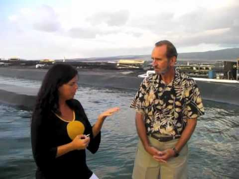Spirulina vs. Chlorella and other facts about Hawaiian Spirulina Superfood with Dr. Gerry Cysewski