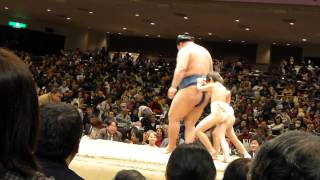 ダブルスイングだよ、豪栄道!鶴竜もこども相撲(平成26年2月9日、第38回大相撲トーナメント) thumbnail