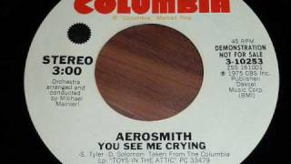 Aerosmith - You See Me Crying 45rpm
