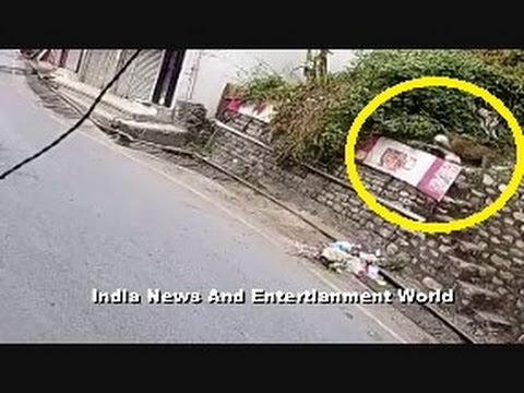 Tiger Attack On Dog at Residence of India - Live Video