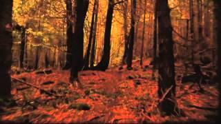 The Orenda by Joseph Boyden Book Trailer | Canada Reads 2014 | CBC