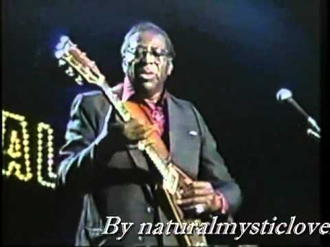 Albert King I'll Play The Blues For You Japan Blues Carnival 89 .flv