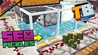 Sea Pickle Farm | Truly Bedrock [1-42] | Minecraft Bedrock Edition SMP (MCPE / MCBE)