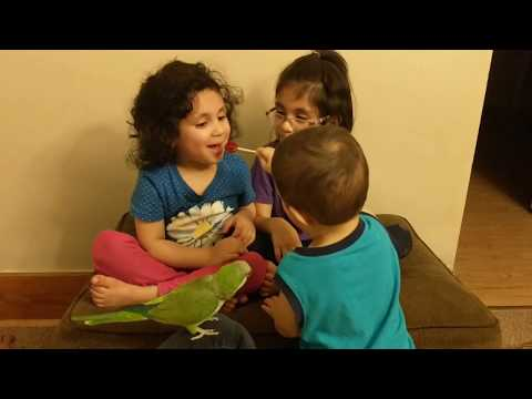 Baby with BIG HEART 💓 Shares Lollipop with SISTERS and Parrot! A True Love 💓
