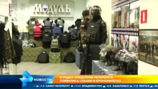 Собаки в бронежилетах появятся в рядах спецслужб в Санкт-Петербурге