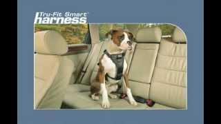 The Kurgo Tru-Fit Smart Dog Harness - Car restraint harness for your dog Thumbnail