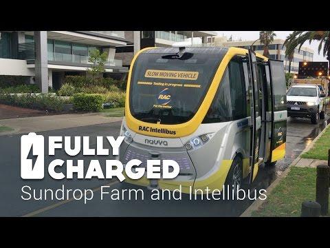 Sundrop Farm - Intellibus | Fully Charged