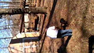 Drama And Tragedy Rottweiler Obedience Training