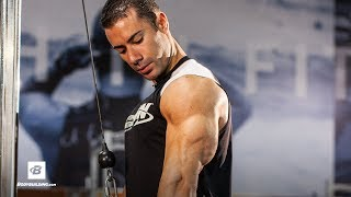 Arms by Alex Carneiro | Strong Biceps & Triceps Workout