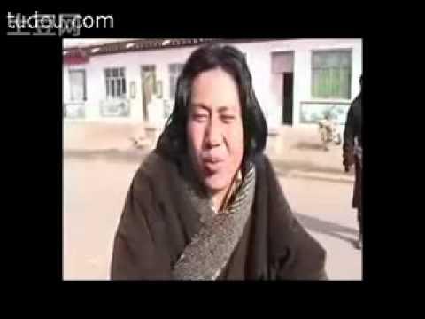 1996 lijiang earthquake
