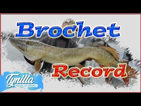 brochet record une énorme journée thumbnail