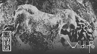 "Converge - ""Wildlife"" (Full Album Stream)"