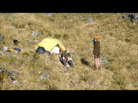Fiordland Wapiti Billyburn  2019