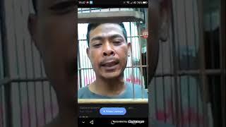 Video Video parodi Burung gacor edan download MP3, 3GP, MP4, WEBM, AVI, FLV Juli 2018