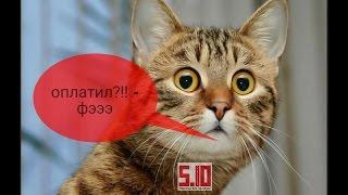 Кот когда ты оплачиваешь высокие тарифы,налоги !))