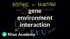 Gene environment interaction | Behavior | MCAT | Khan Academy